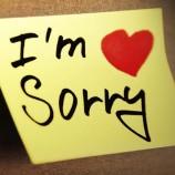 Tips Meminta Maaf Yang Romantis