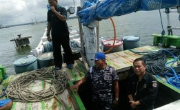 KLHK Menanggapi Masalah Kapal Pembawa Kayu Ilegal Yang Di Tangkap TNI