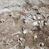 166 Mayat Ditemukan dalam Sebuah Kuburan Massal di Veracruz
